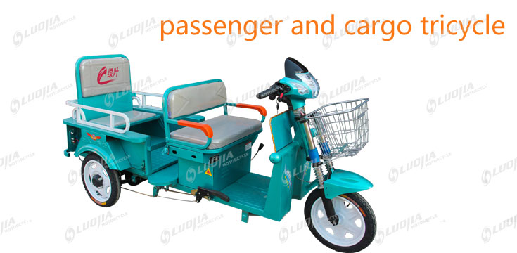 passenger and cargo tricycle
